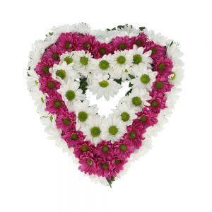 Coração de margaridas brancas e cor de rosa