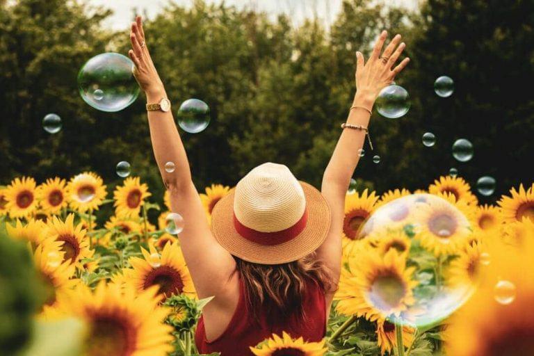 Oferecer flores - conheça os 9 benefícios para a saúde e bem-estar