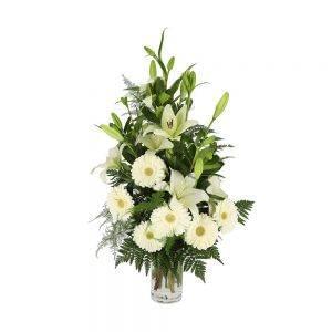 Palma branca para funeral