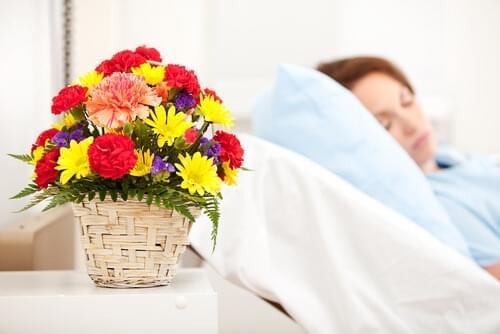Flores para desejar rápidas melhoras