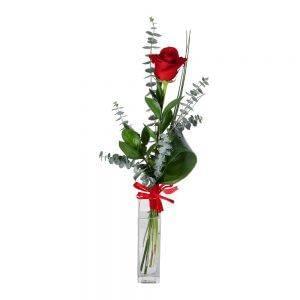 Rosa vermelha com um laço